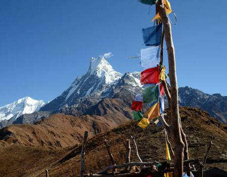 Mardi Himal Base Camp Trekking